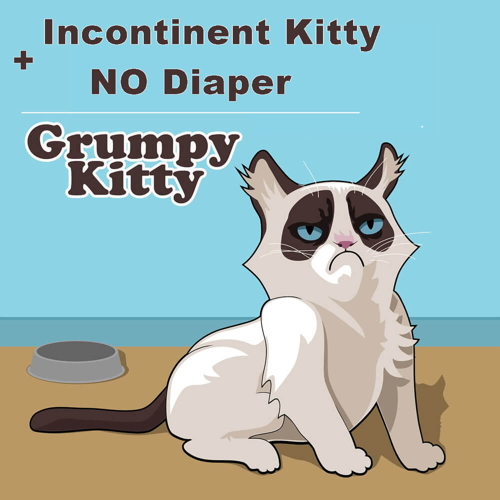 Cat Nappies - Why and When to Use Cat Diapers?