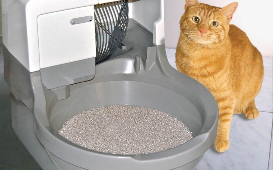 CatGenie Self Washing Self Flushing Cat Box; Best Automatic Litter