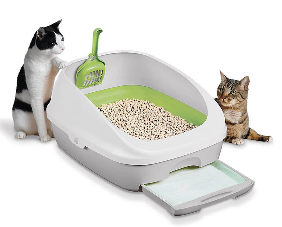 Buy Purina Tidy Cats Litter Breeze System on Amazon