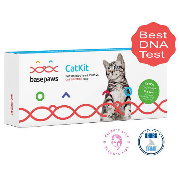 breed and health cat dna kit