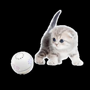 Smart Cat Toy Ball