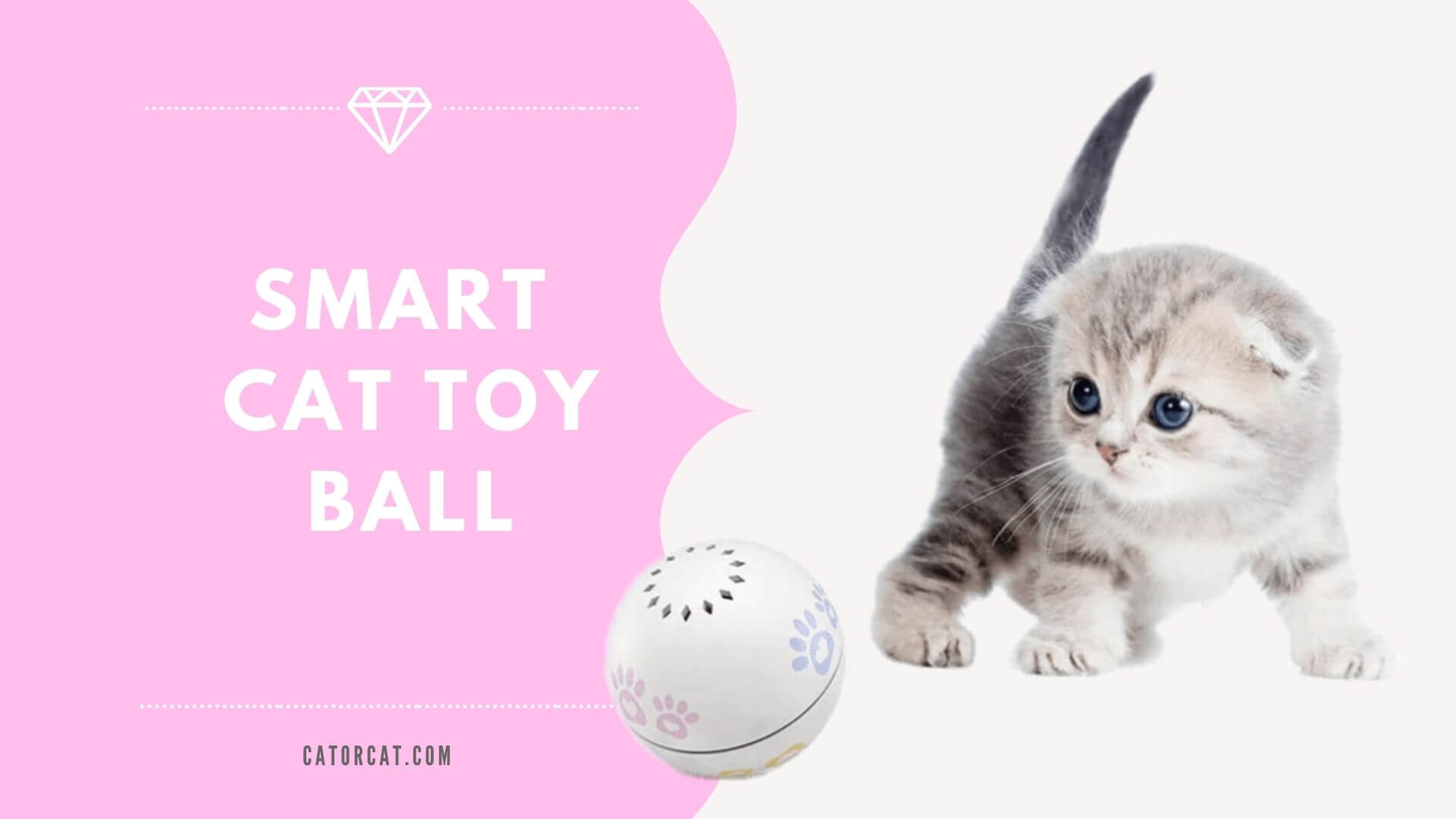 best cat balls