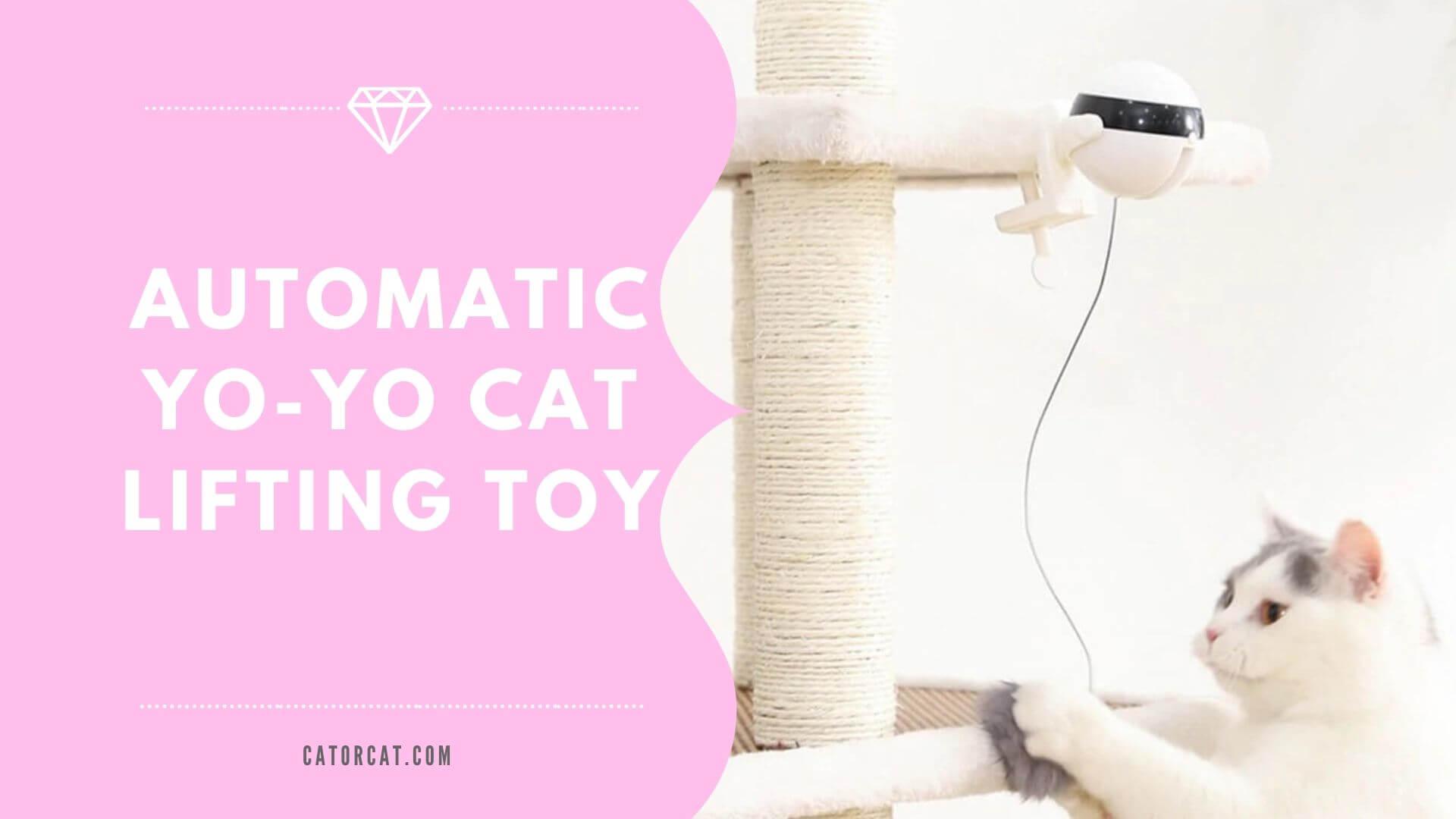best cat yoyo interactive toy