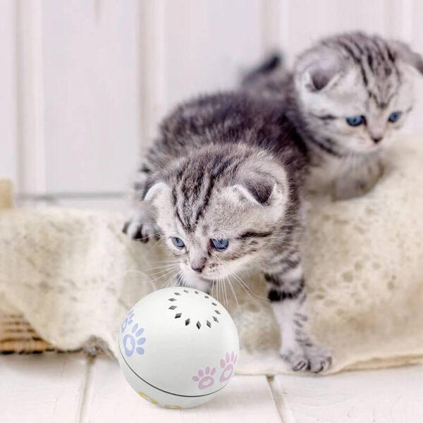 disco ball cat toy