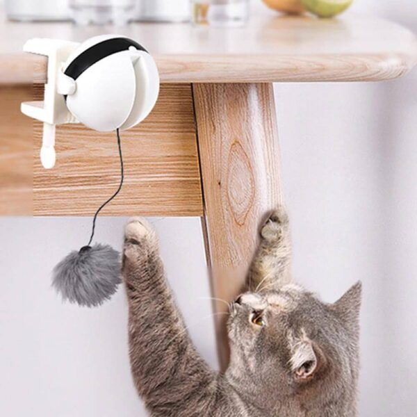 electric yoyo cat lifting toy
