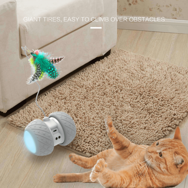 moving cat toy