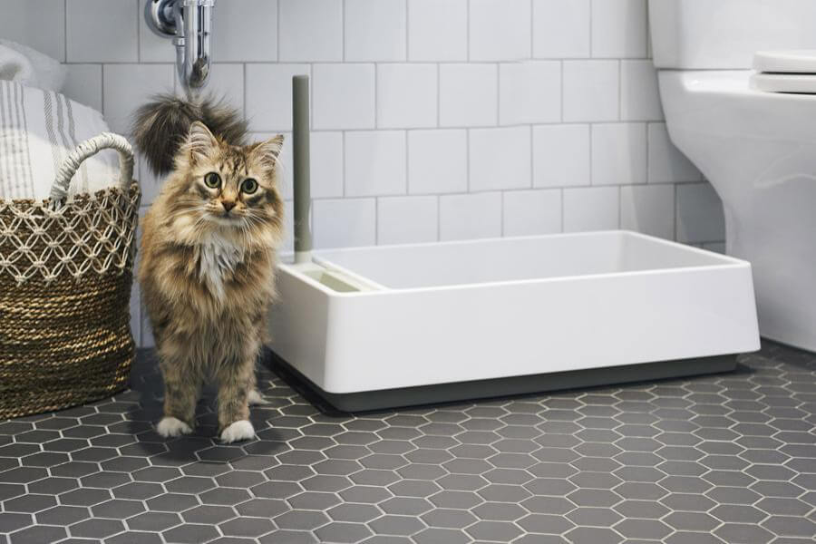 tuft and paw cove litterbox